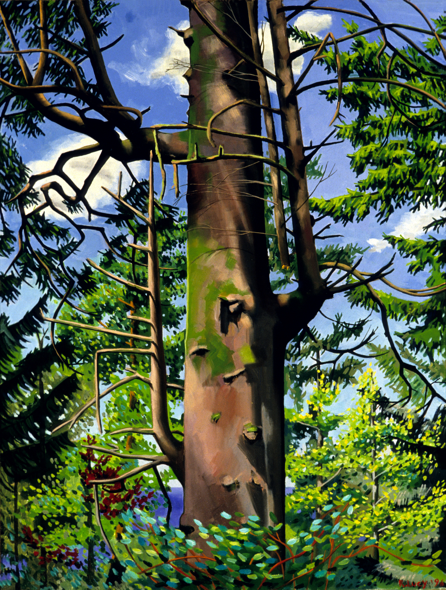 Noble_Fir, 1996, oil on linen, 32x24, private collection, chicago